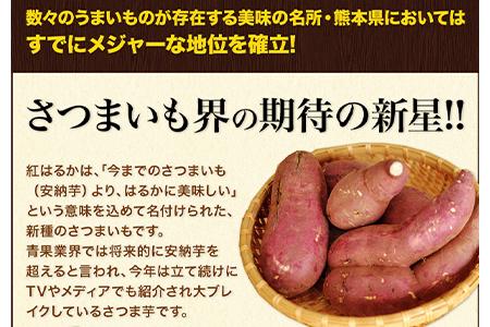 熊本県大津町産 中無田農園の紅はるか 約5kg(大中小サイズ不揃い) 熊本県大津町 《5月中旬-6月中旬頃より順次出荷》 さつまいも 芋 スイートポテト 干し芋にも 名産地 特産品
