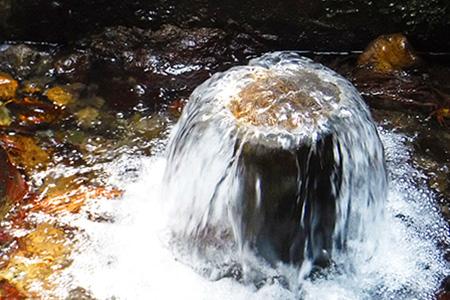 い・ろ・は・す(いろはす)阿蘇の天然水 2L 計6本 2L×6本×1ケース 《3-7営業日以内に順次出荷(土日祝除く)》 阿蘇 送料無料 コカ・コーラ