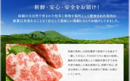 【熊本名物】馬刺しのトロ盛り(上トロ、トロ、赤身 各100g)