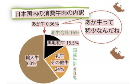 ○【期間限定・増量】お肉屋さんの手づくり!あか牛100%ハンバーグ(150g×10個セット)