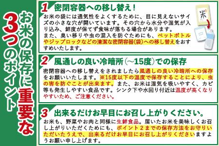 ご家庭用 熊本ふるさと無洗米12kg 熊本県産 無洗米 12kg 精米 御船町《6月下旬-8月上旬頃より順次出荷》
