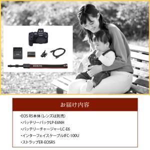 R14038 キヤノンミラーレスカメラ EOS R5
