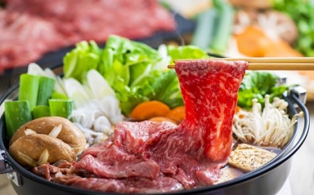 F-13 「おおいた和牛」モモ・ロースすき焼き肉(500g)&豊後牛ハンバーグ(9個)贅沢セット