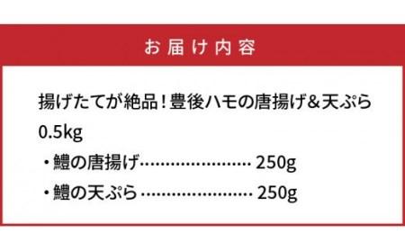 揚げたてが絶品!豊後ハモの唐揚げ&天ぷら/0.5kg