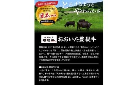豊後牛ハンバーグ1kg(プレーン,チーズ入り)