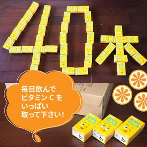 果汁100%紙パックみかんジュース125ml×40本