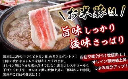 MJ-3112_都城産「お米豚」ときめき3.7kgセット(黒たれつき)