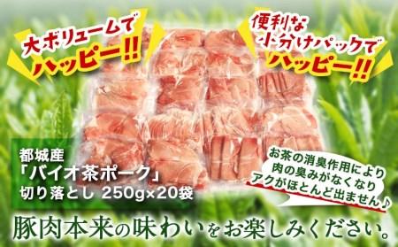 MJ-3628_都城産「バイオ茶ポーク」5kgハッピーセット