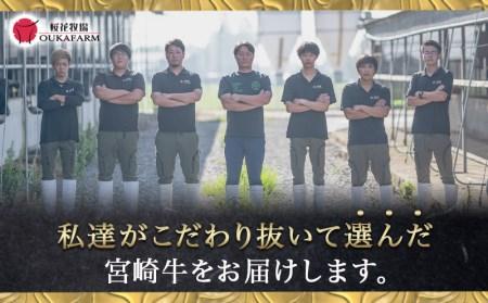宮崎牛【赤身】ももステーキ&サイコロステーキ800gセット_AC-6503