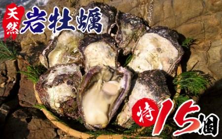 P6 延岡産天然岩牡蠣(生食用)特サイズ15個(2019年4月から発送開始)
