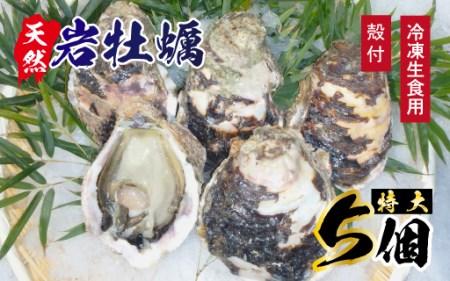 A907 延岡産天然岩牡蠣(冷凍生食用)特大サイズ5個(2019年4月から発送開始)