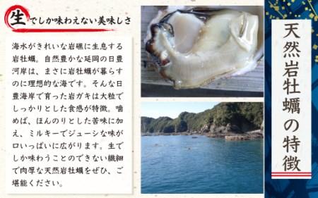 C609 延岡産天然岩牡蠣(冷凍生食用)特大サイズ10個(2019年4月から発送開始)