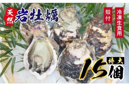 T7 延岡産天然岩牡蠣(冷凍生食用)特大サイズ15個(2019年4月から発送開始)