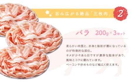 B014 ひなた桜豚盛り合わせセット