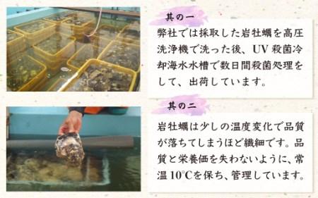 B28 延岡産天然岩牡蠣(生食用)3kg(大)(2019年4月から発送開始)