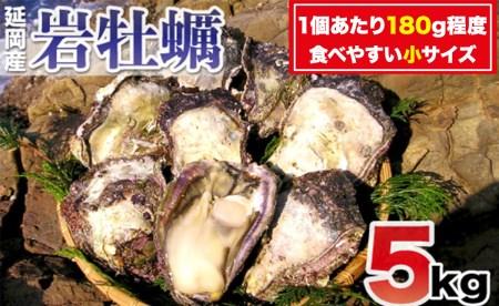 A903 延岡産天然岩牡蠣(生食用)5kg(小)(2019年4月から発送開始)