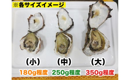 D026 延岡産天然岩牡蠣(生食用)10kg(中)(2021年4月から発送開始)