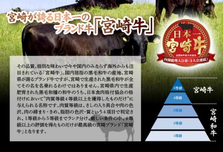 H18-191 安楽畜産宮崎牛バラ&モモ焼肉用 食べ比べセット600g