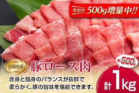 B85-191 4等級以上!!県産黒毛和牛(300g)と県産豚(500g)のお楽しみ焼肉セット<合計800g>