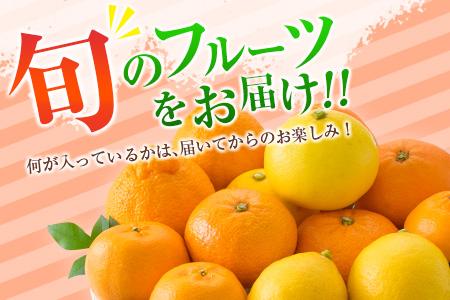 B43-191 ≪期間・数量限定≫旬の柑橘詰合せ★お楽しみセット4kg以上(4~6種類)