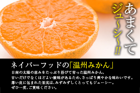 A39-20 ≪期間・数量限定≫人気の温州みかん(計5kg・サイズ混合)