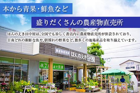 B44-191 朝採れ新鮮!!野菜・果物詰め合わせセット(10~12品)