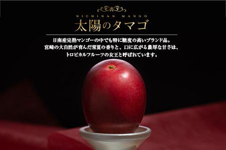 EB4-191 ≪糖度15度以上≫濃厚な甘み★完熟マンゴー「太陽のタマゴ」2~3玉