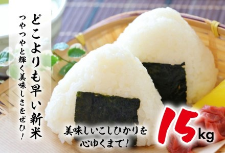 E16-191 【超早場米】無洗米・日南産新米こしひかり(15kg)