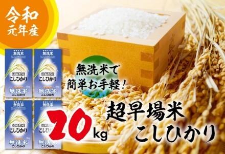F17-191 【超早場米】無洗米・日南産新米こしひかり(20kg)