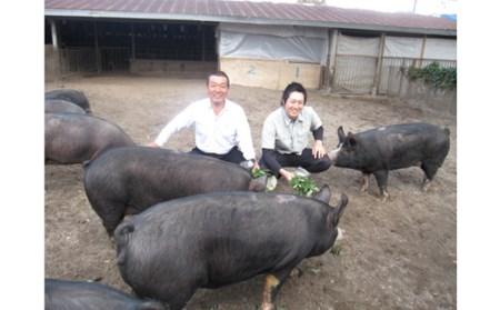 黒豚ヒレかつ用セット(黒豚ヒレとんかつ約500g:桑水流畜産)