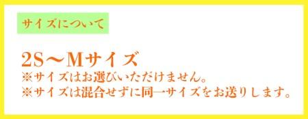 【先行予約・数量限定】宮崎県 西都産 陽蜜みかん5kg <1.5-95>