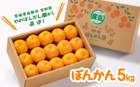 宮崎県西都産 宝財原やのポンカン 5kg<1-119>