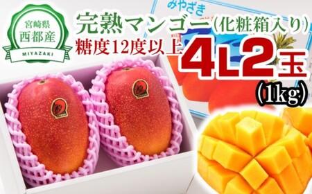 2-45 【数量限定】西都産完熟マンゴー(JA西都)