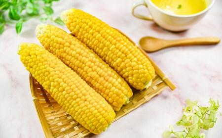 【個数限定】西都市産 ゴールドラッシュ スイートコーン  5.5kg はしだ農園<1-40>