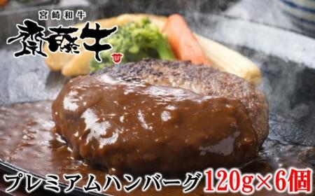 1-92 宮崎和牛「齋藤牛」手作りハンバーグセット(120g×6個)