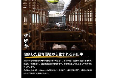 c566_tf <九州 宮崎 有田牛 牛乃屋謹製ハンバーグ150g×6個>2020年3月末迄に順次出荷