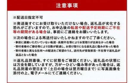 <太陽のタマゴ>2L×2玉 最上級完熟マンゴー 桐風木箱入り【C81】