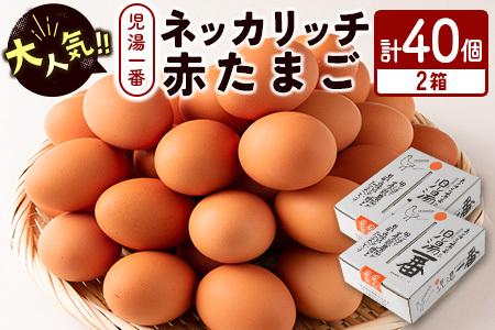 <児湯養鶏自慢の卵>ネッカリッチ赤たまご「児湯一番」2箱40個【B19】