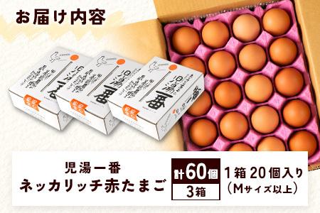 <児湯養鶏自慢の卵>ネッカリッチ赤たまご「児湯一番」60個【B23】