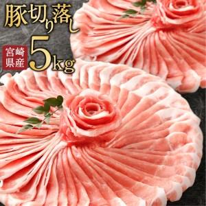 <宮崎県産豚肉5kg切落し>※60日以内に出荷【B193-01】