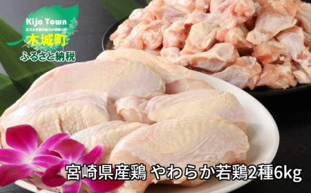 e162_sn <宮崎県産鶏 やわらか若鶏2種6kg>2020年1月末迄に順次出荷