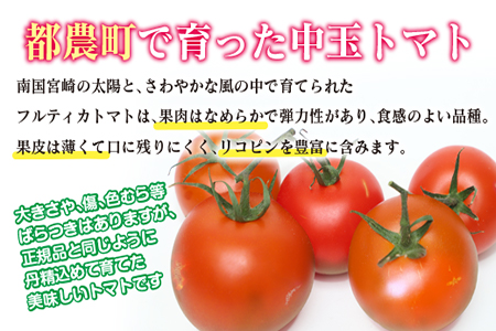 ZC5 【訳あり】フルティカトマト(計2kg)都農町産