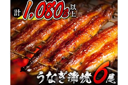 うなぎ蒲焼6尾(計1080g以上) 鰻楽