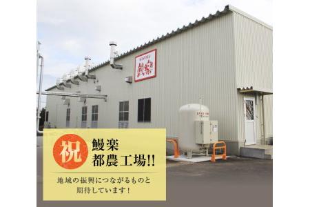 Aa56-8 うなぎ蒲焼2尾(計320g以上)国産 都農町加工品