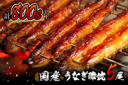 BB15-5 うなぎ蒲焼5尾(計800g以上)都農町加工品