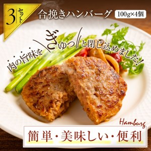 BC18 宮崎牛ヒレ肉ステーキ360g&宮崎牛モモ肉サイコロステーキ500g&合挽きハンバーグ(100g×4個)セット《合計1.2kg以上》
