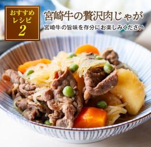 A498 数量限定【訳あり】宮崎牛赤身切落し肉(スライス)計1.1kg
