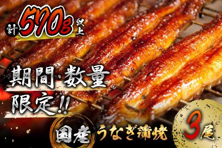 AB134-930 《期間・数量限定》うなぎ蒲焼3尾(計600g以上)国産鰻(ウナギ・さんしょう・たれセット)