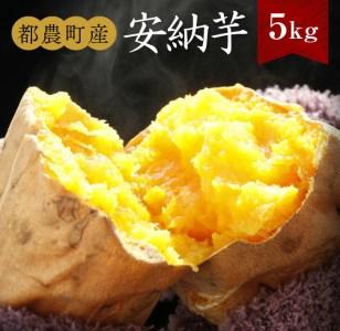 A293 濃厚な蜜感《数量限定》都農町産安納芋(5kg)
