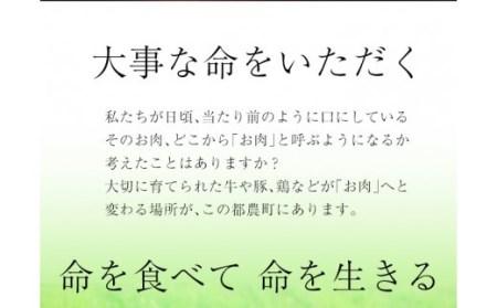 A326-1 今なら増量中★黒毛和牛小間切れ☆(宮崎県内加工品)